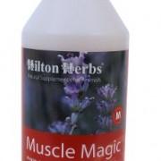 Hilton Herbs Muscle Magic Lotion Externe pour Tensions Musculaires pour Cheval