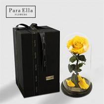 Rose enchantée de la Belle et la Bête sous cloche – Rose préservée 100% naturelle